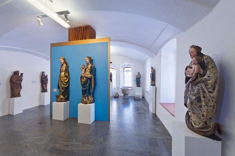 rosnatka okrouhlolistá, foto: Archiv Vydavatelství MCU s.r.o.